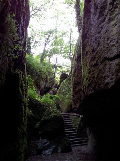 Abstieg zur Grotte, zu der sich Franziskus zum Gebet und zur Meditation zurückzog.