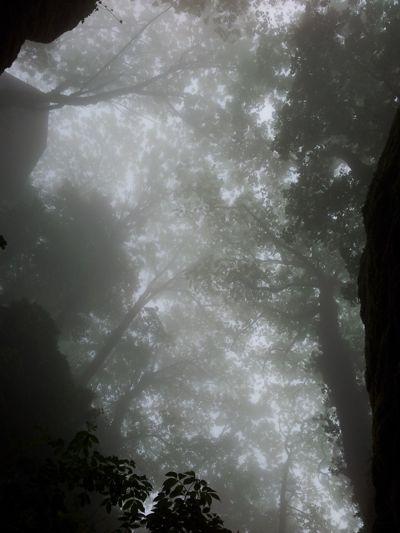 Der Nebel verhangene La Verna. So etwa könnte die Stimmung gewesen sein, als Franziskus aus seiner Felsengrotte zum Himmel geschaut hat.