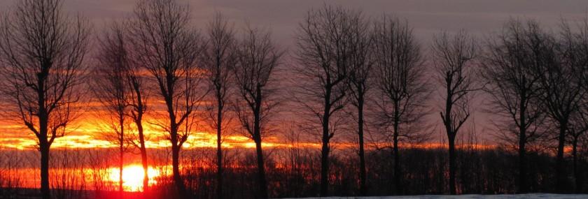 Winterliche Impression: Sonnenuntergang in der Nordeifel