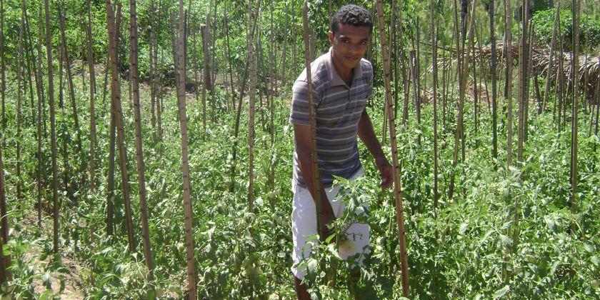 Wir pflanzen für das Leben! - Kentnisse in der Landwirtschaft gehören zum Schulprogramm