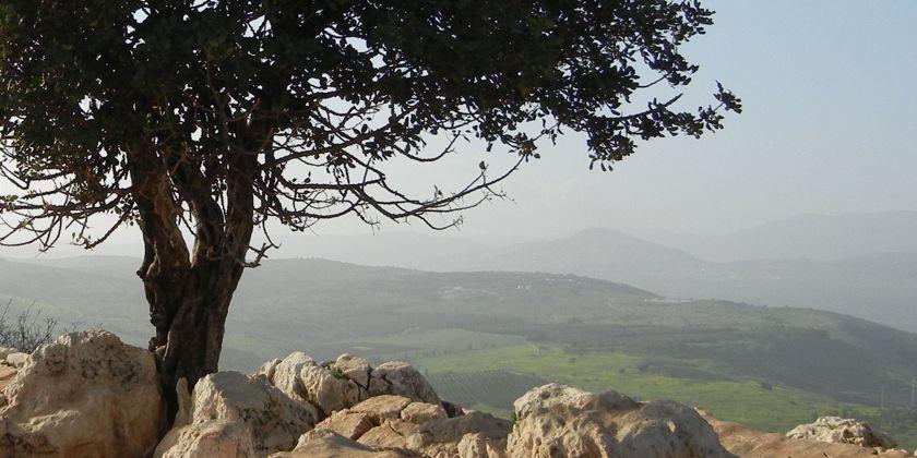 Gemeinsam unterwegs durch die faszinierende Landschaft Israels; Bild von rwayne307/pixabay.com (Public Domain)