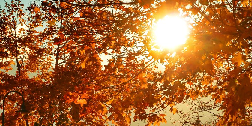 """""""Der Herbst verändert nicht nur die Natur, sondern wirkt sich auch auf die Stimmung aus. Wenn die Tage kürzer werden und die Blätter fallen, ist für viele eine Zeit der Innenschau gekommen!"""" Bild von Dr. Klaus-Uwe Gerhardt / pixelio.de"""
