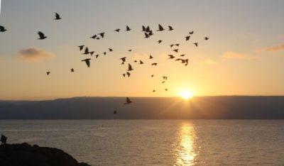 Abendsonne über dem See von Tiberias.