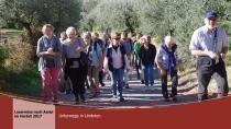 Assisi-2017-19