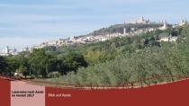 Assisi-2017-36